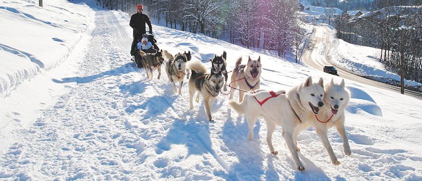 France_valmorel_husky-dogs.jpg
